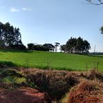 Uma área de terras de campo e mato, com área de 30 hectares
